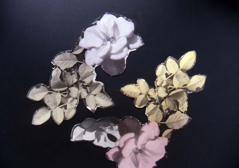 flowers cut-out