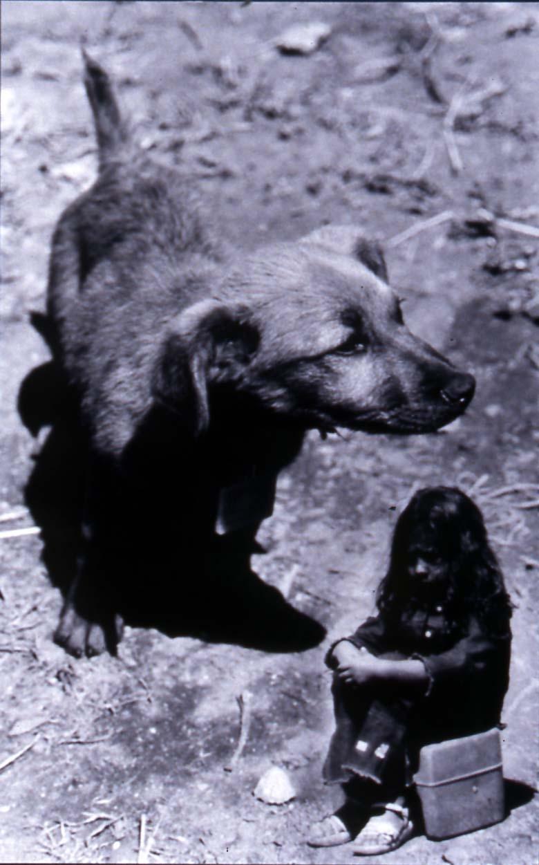 Scale Girl & dog