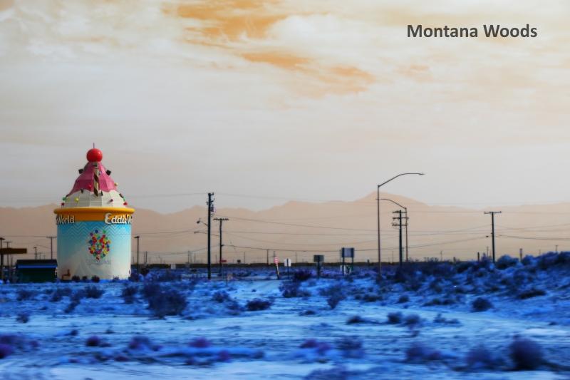 Montana-Woods-invert