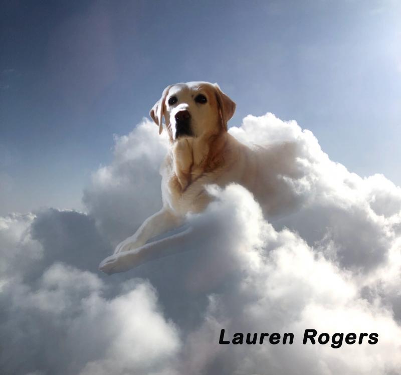 Lauren-Rogers-could-montage