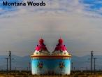 Montana-Woods-3
