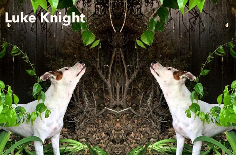 Luke-Knight-1