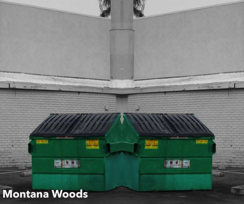 Montana-Woods-2