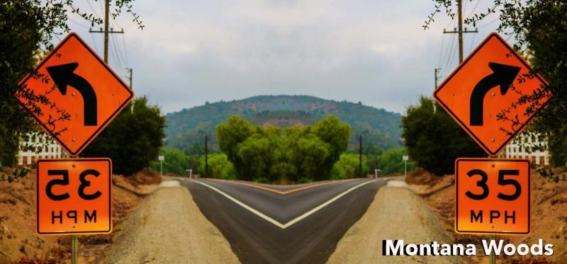 Montana-Woods-4