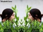 Elizabeth-Cano-4