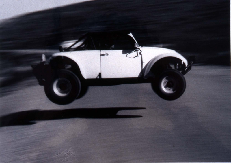 jumping bug