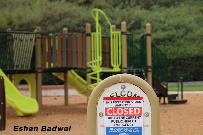 Eshan-Badwal-Pamdemic