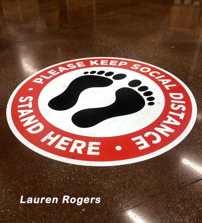 Lauren-Rogers-Pandemic