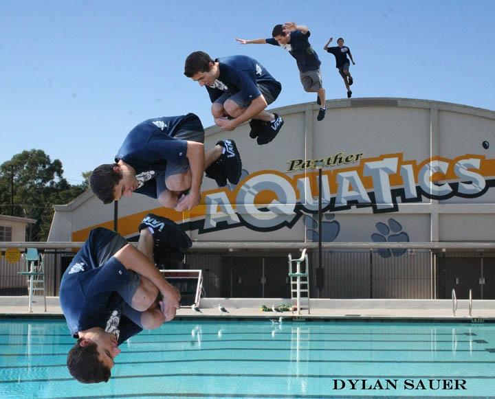 Dylan Sauer(done)