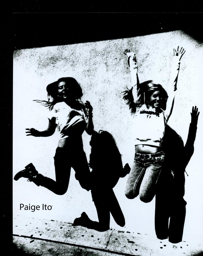 Paige Ito- posterization copy