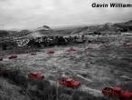 Gavin-Williams-truck-montage