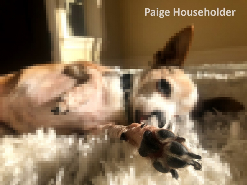 Paige-Householder-pixel-2