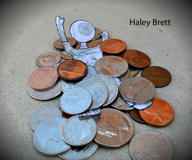 Haley Brett Still Life