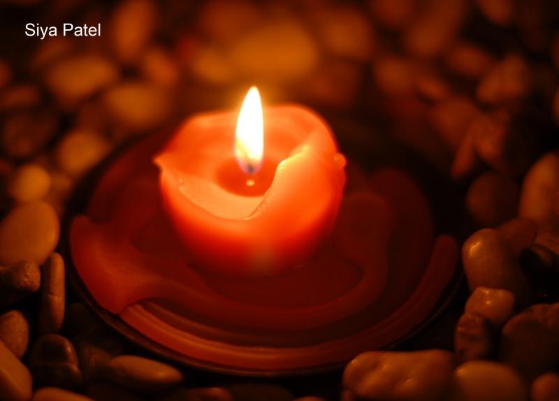 Siya Patel light