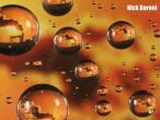 Nick-Baroni-oil-well