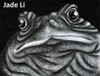 19-Jade-Li_Toad-But-Incredibly-Wrinkly