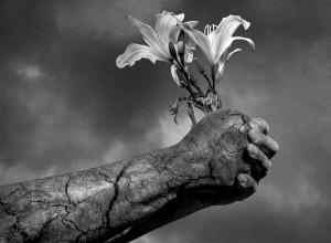 The Gardener - Alex Monji